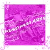 Forró Para Amar fra Various Artists
