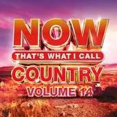 NOW That's What I Call Country, Vol. 14 by Various Artists