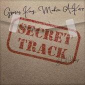 Secret Track by Gipsy Kings