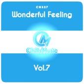 Wonderful Feeling, Vol.7 von Various Artists