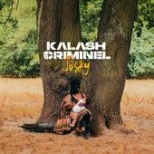Josky by Kalash Criminel
