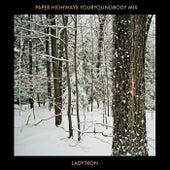 Paper Highways (Youryoungbody Remix) de Ladytron