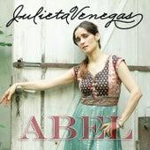 Abel de Julieta Venegas