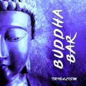Tribalism by Buddha-Bar