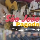 São João Pagode de Various Artists