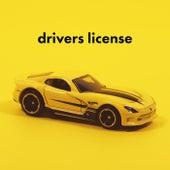 Drivers License de Various Artists