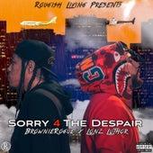 Sorry 4 The Despair von BrownieRogue