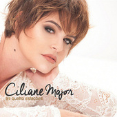 As Quatro Estações by Ciliane Major