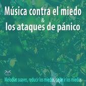 Música contra el miedo y los ataques de pánico - Melodías suaves, reducir los miedos, dejar ir los miedos von Máxi relajación