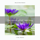 ! ! ! ! ! ! ! ! ! ! The Journey of Soft Wild Song de Nature Sound Collection