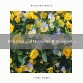 ! ! ! ! ! Bird Calls and Mother Earth Noise vol. 1 de Nature Sounds for Sleep and Relaxation