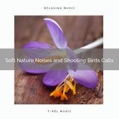 ! ! ! ! ! ! ! ! ! ! Soft Nature Noises and Shooting Birds Calls de Nature Sound Series