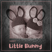 Sweet, Little Bunny – Collection of Soothing New Age Music for Baby Sleep, Time with Mommy and Daddy, Evening Rituals, Bedtime, Lullabies by Sleeping Baby Music