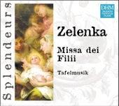 DHM Splendeurs: Zelenka: Missa Dei Filii by Frieder Bernius