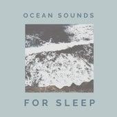 Ocean Sounds for Sleep: Nature Sounds, Seagulls, Rain, Relaxing Music de Ocean Sounds Collection (1)