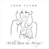 Wild Beat the Wings de John Flynn