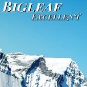 Excellent de BigLeaf