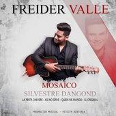 Mosaico Silvestre Dangond / La Pinta Chevere / Asi No Sirve / Quien Me Mando / El Original (Cover) von Freider Valle