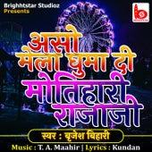 Aso Mela Ghuma Di Motihari Rajaji by Brijesh Bihari