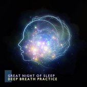 Great Night of Sleep (Deep Breath Practice with the Moon Rays) by Peaceful Sleep Music Collection