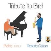 Tribute to Bird de Rosario Giuliani/Franco...