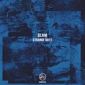 Strange Dayz de Slam