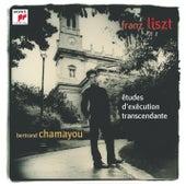 Liszt : 12 Etudes D'Exécution Transcendante by Bertrand Chamayou