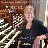 Marked for Grace de Jan Kraybill