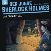 Der junge Sherlock Holmes, Folge 5: Das Odin-Ritual von Sherlock Holmes