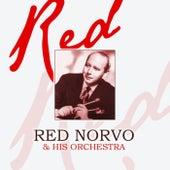 Red de Red Norvo
