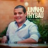 A procura da felicidade von Juninho Thybau