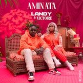 Aminata (feat. Victoire) de Landy