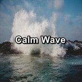 Calm Wave von Baby Music (1)