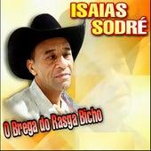 O Brega do Rasga Bicho by Isaías Sodré