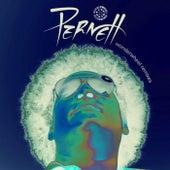 Nickodemus & Zeb Remixes by Pernett
