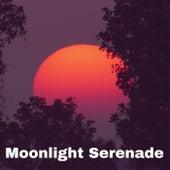 Moonlight Serenade by Papa Burlington