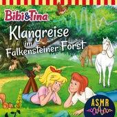 Klangreise im Falkensteiner Forst (ASMR) von Bibi & Tina