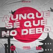Aunque Se Que No Debo (Remix) von Damian Escudero DJ