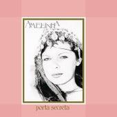 Porta Secreta by Amelinha