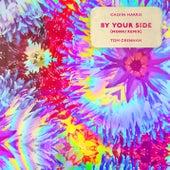 By Your Side (Monki Remix) von Calvin Harris