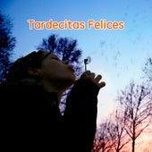 Tardecitas Felices de Various Artists