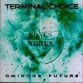 Fading (Ominous Future Bonus Works) by Terminal Choice