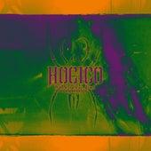 Hate Never Dies Vol. 2 de Hocico