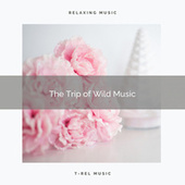 ! ! ! ! ! The Trip of Wild Music by Nature Soundscape