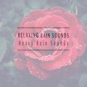 Heavy Rain Sounds de Relaxing Rain Sounds