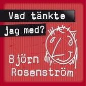 Vad tänkte jag med? by Björn Rosenström