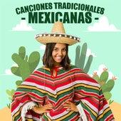 Canciones Tradicionales Mexicanas de Various Artists