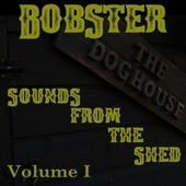 Sounds From The Shed: Volume 1 by Bobster