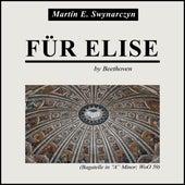 Für Elise de Martín E. Swynarczyn