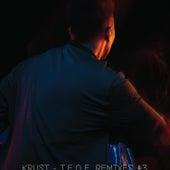 TEOE Remixes #3 by Krust